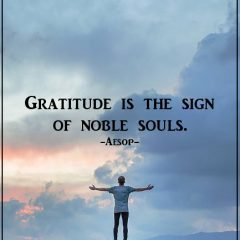 Gratitude In Life Is A Necessity