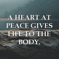A Peaceful Heart Is Essential For The Body